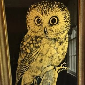 Vintage 1970s owl etching wall art🦉
